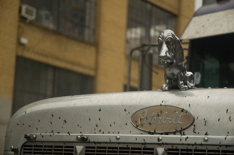 Not another mack truck hood ornament photo really not worth archiving